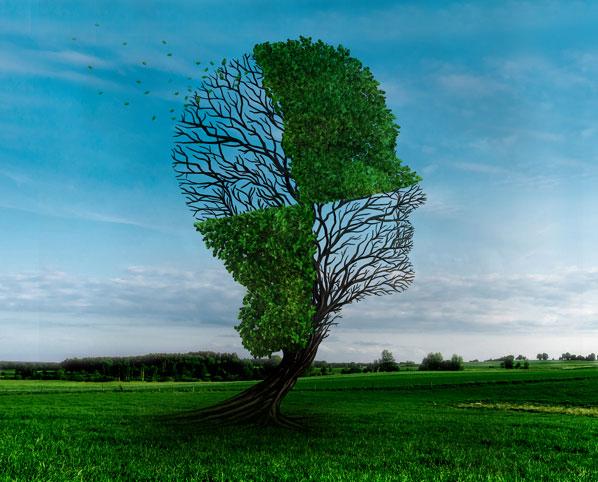 Neurological Diseases مغز و اعصاب