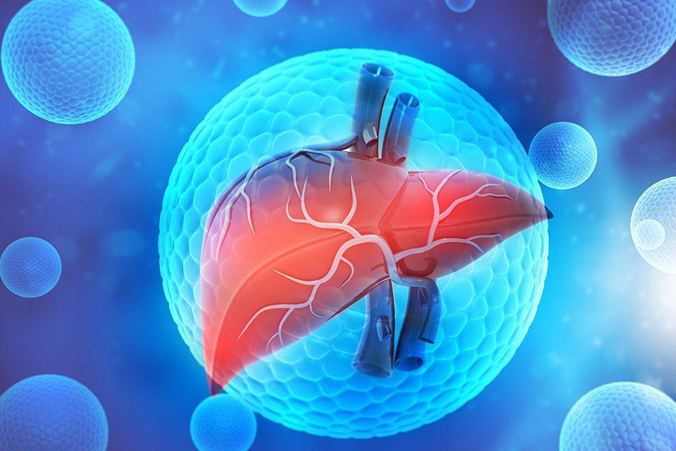 fatty-liver-treatment-acupuncture درمان کبد چرب طب سوزنی